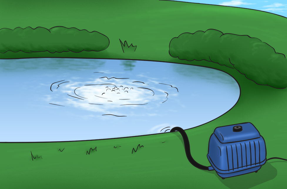 shallow pond aerator