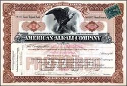 American Alkali Company 1900