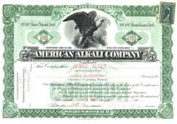American Alkali Company - New Jersey 1900