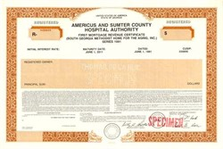 Americus and Sumter County Hospital Authority - Georgia 1991