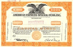 American Express Special Fund, Inc. - Delaware