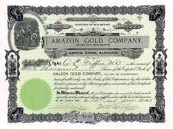 Amazon Gold Company 1903 - Silver City, New Mexico