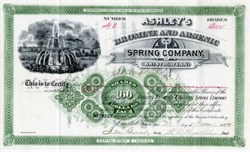 Ashley's Bromine and Arsenic Spring Company - Bristol, Tennessee 1884