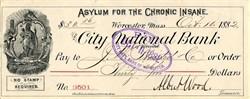 Asylum For The Chronic Insane - Worcester, Massachusetts - 1883