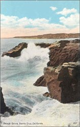 Beach Drive, Santa Cruz, California Postcard