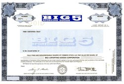 Big 5 Sporting Goods Corporation - Delaware