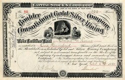 Boulder Consolidated Gold and Silver Mining Company - New York 1880