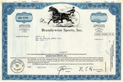 Brandywine Sports, Inc 1970's - Dover Downs - Old Harness Racing Vignette