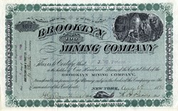 Brooklyn Mining Company - Gilpin County, Colorado - New York 1890
