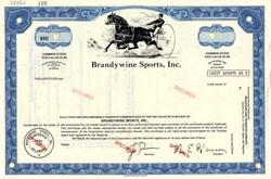 Brandywine Sports, Inc. - Delaware