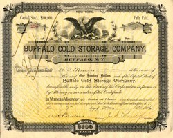 Buffalo Cold Storage Company - New York 1896
