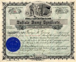 Buffalo Hump Syndicate signed by Charles Sweeney - Buffalo Hump Mining District Elk City, Idaho 1902