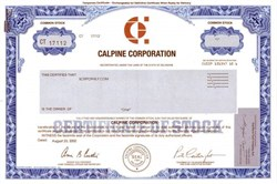 Calpine Corporation - 2002