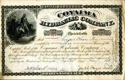 Coyaima Hydraulic Company (Christopher Columbus vignette)  - New York 1876