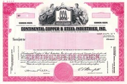 Continental Copper & Steel Industries, Inc. ( CCX Inc )