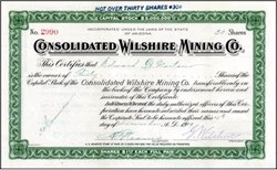 Consolidated Wilshire Mining Co. - Arizona