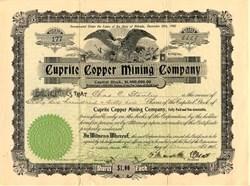 Cuprite Copper Mining Company - Goldfield, Nevada 1906