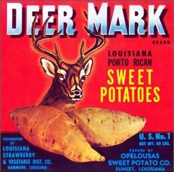 Deer Mark Brand Louisiana Porto Rican Sweet Potatoes
