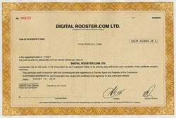 Digital Rooster.com - Canadian Adult Entertainment Dot Com Company