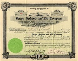 Dirigo Sulphur and Oil Company - Maine 1904