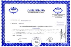 eCom.com, Inc. - Nevada 2001