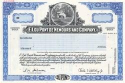 E. I. Du Pont De Nemours and Company - Delaware 1999
