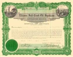 Elkhorn Salt Creek Oil Syndicate 1923