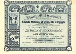 Egyptian Wine Stock Certificate 1950