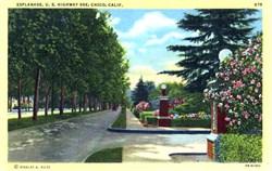 Esplande, Chico, California Postcard