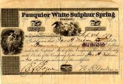 Fauquier White Sulphur Spring Company - Warrenton , Virginia 1879