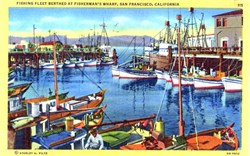Fishing Fleet at Fisherman's Wharf, San Francisco, California