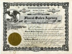 Flacal Sales Agency - Orlando, Florida 1924