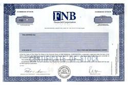 FNB Financial Corporation - Three Rivers, Michigan