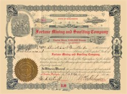 Fortune Mining and Smelting Company - Washington State 1905