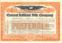General Artificial Silk Company (Owned patents to Rayon) - Delaware 1902