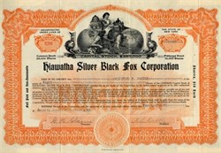 Hiawatha Silver Black Fox Corporation - Tioga County, New York - 1923