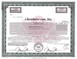 i-Incubator.com, Inc. (Early Dot Com Bomb) -  2002