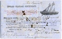 Inward Pilotage Certificate (Sailboat vignette)  - Liverpool, England 1861