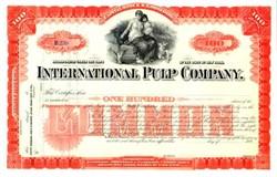 International Pulp Company 1890's (Early Asbestos Company)