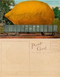Giant Lemon in Train Postcard from 1910