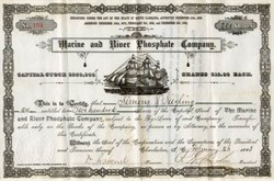 Marine and River Phosphate Company - Charleston, South Carolina 1883