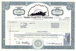 Malibu Grand Prix Corporation (Acquired by Warner Communications Inc.) - Delaware 1977