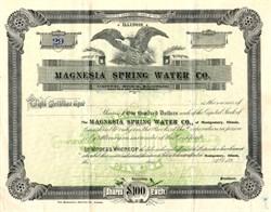 Magnesia Spring Water Co. - Illinois 1890's
