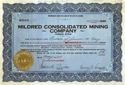 Mildred Consolidated Mining Company 1924 - Arizona