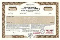 Monroe County School District - Georgia 1993