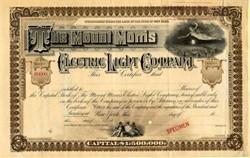 Mount Morris Electric Light Company - New York 1892