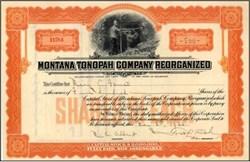 Montana Tonopah Company Reorganized