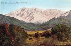 "Mt. San Antonio, ""Old Baldy,"" California Postcard"