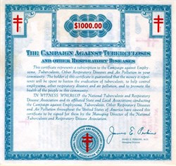 National Tuberculosis and Respiratory Disease Association ( Now American Lung Association)  - Christmas Seal Certificate 1969