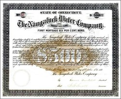 Naugatuck Water Company 1889 - Gold gilded printing - Connecticut